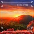 bella 23481