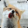 spirit73