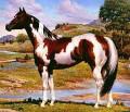 horsegal21
