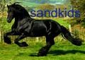 sandkids