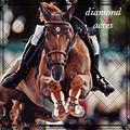 diamond acres