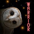 warriorcats4ever!