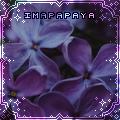 imapapaya