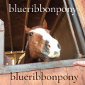 blueribbonpony