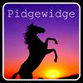 pidgewidge