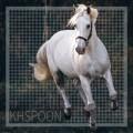 khspoon