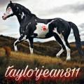 taylorjean811