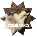 summerbirds
