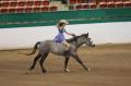 cw.equines