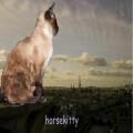 horsekitty
