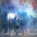 sport horse breeder