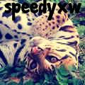 speedyxw