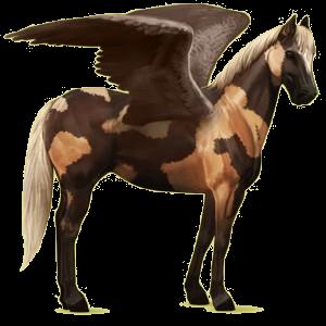 Riding pegasus Paint Horse Liver chestnut Tovero