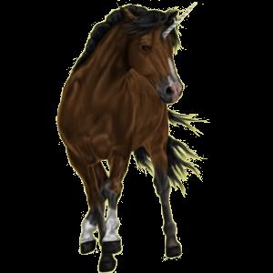 Riding unicorn Peruvian Paso Chestnut