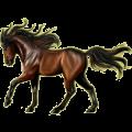 Riding Horse Hanoverian Dark Bay