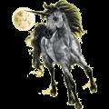 Riding unicorn Irish Hunter Dapple Gray