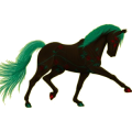 Riding Horse Trakehner Dun