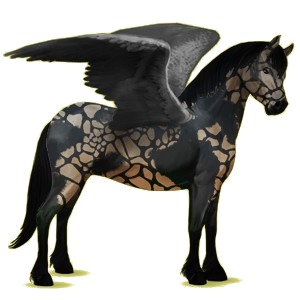 Pegasus pony Connemara Mouse Gray