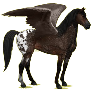 Riding pegasus Mustang Dun