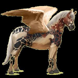 Pegasus pony Connemara Cremello