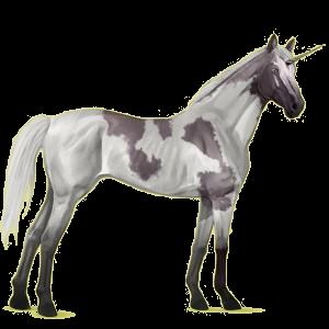 Riding unicorn Thoroughbred Cremello