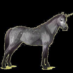 Unicorn pony Australian Pony Light Gray