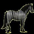 Riding Horse Purebred Spanish Horse Black