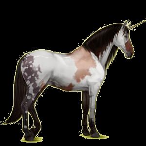 Riding unicorn Peruvian Paso Dark Bay