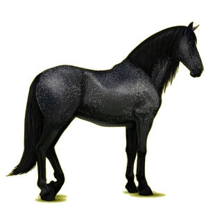 Riding Horse Purebred Spanish Horse Dapple Gray