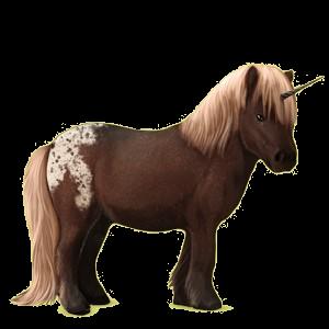 Unicorn pony Shetland Bay