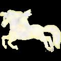 Riding pegasus Thoroughbred Cherry bay