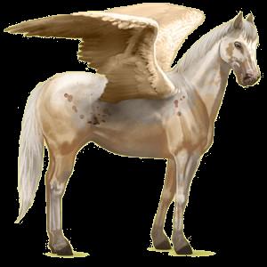 Riding pegasus Paint Horse Chestnut Tobiano