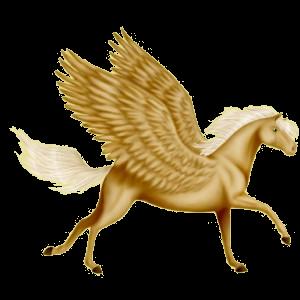 Riding pegasus Arabian Horse Strawberry roan
