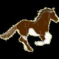 Riding Horse Paint Horse Palomino Tobiano