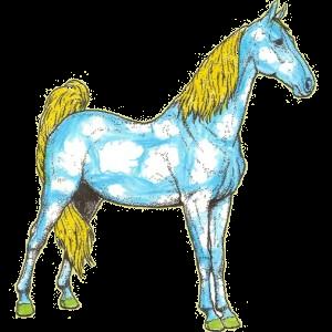 Pony Connemara Dark Bay