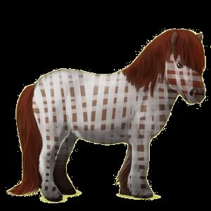 Pegasus pony Shetland Palomino