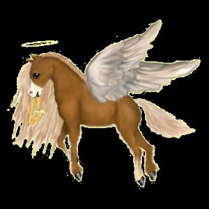 Riding pegasus Arabian Horse Bay