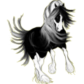 Pony Chincoteague Pony Chestnut Tobiano