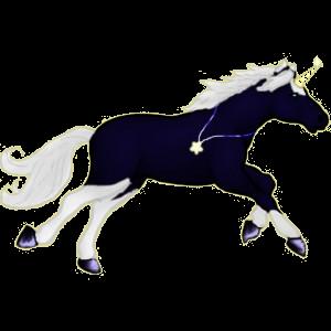 Riding unicorn Arabian Horse Dapple Gray