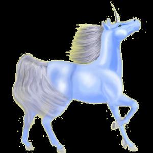 Unicorn pony Connemara Black