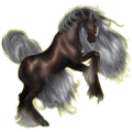 Riding Horse Irish Hunter Roan