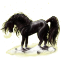 Riding unicorn Black