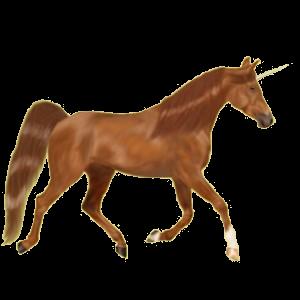 Riding unicorn Trakehner Liver chestnut