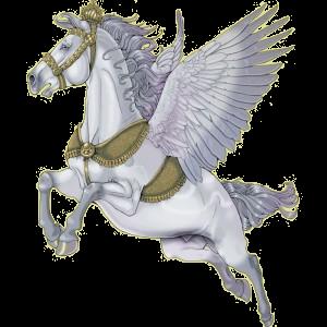 Riding pegasus Marwari Light Gray