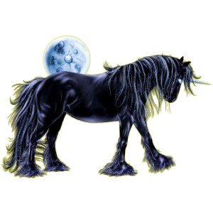 Riding unicorn Friesian Black