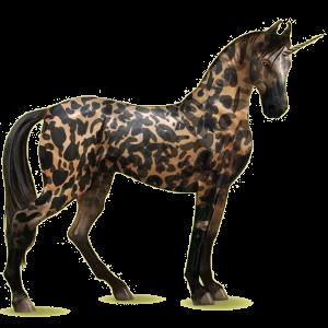 Riding unicorn Marwari Chestnut