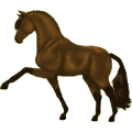 Riding Horse Irish Hunter Liver chestnut