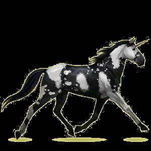 Riding unicorn Morgan Dun