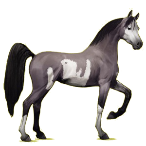 Riding pegasus Arabian Horse Mouse Gray
