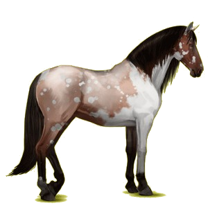 Riding Horse Purebred Spanish Horse Light Gray